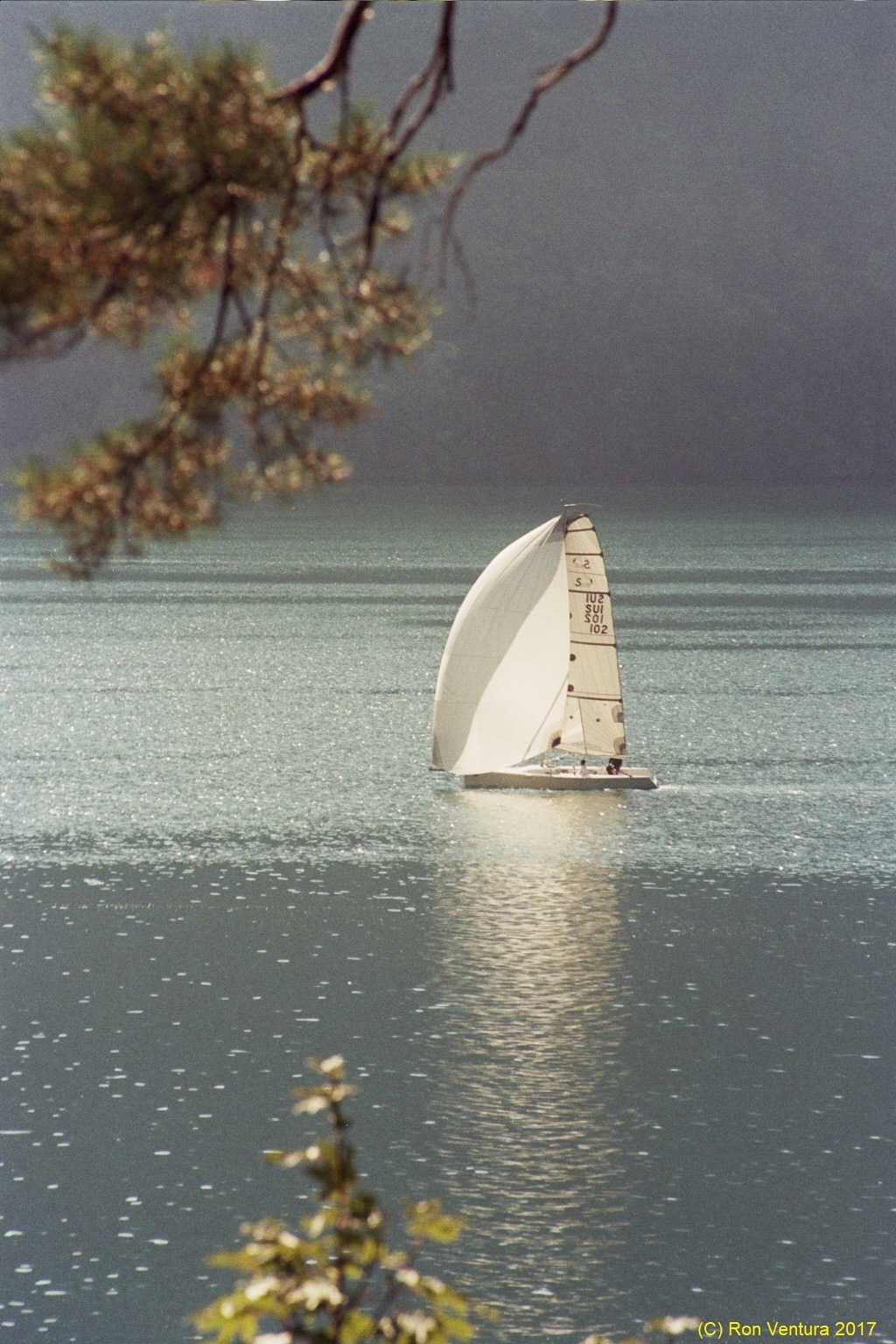 Lake Luzern on Sunday